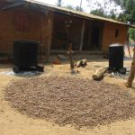 The Water Project: Lokomasama, Gbonkogbonko Village -  Palm Kernal Processsing