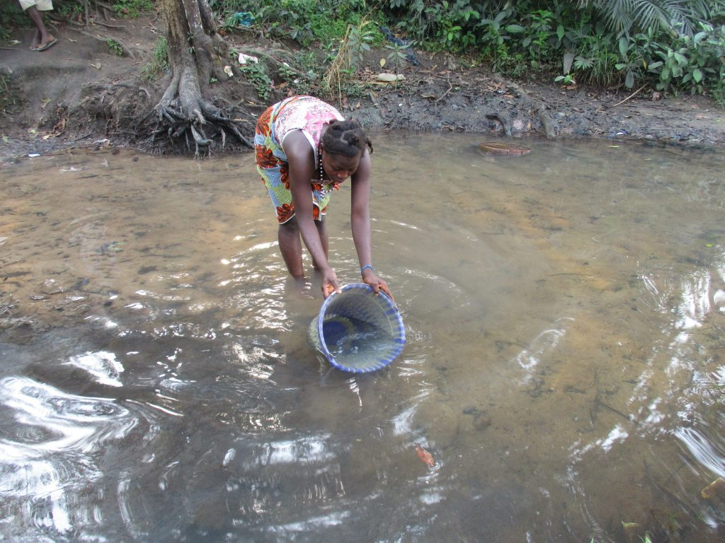 The Water Project : sierraleone20420-woman-collecting-water-2