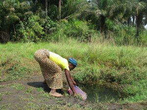 The Water Project:  Woman Collecting Water