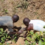 The Water Project: Mwichina Community, Matanyi Spring -  Placing Stones For Backfilling