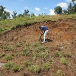 The Water Project: Kalenda A Community, Webo Simali Spring -  Planting Grass