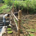 The Water Project: Rosterman Community, Lishenga Spring -  Grass Planting