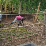 The Water Project: Kalenda B Community, Lumbasi Spring -  Grass Planting