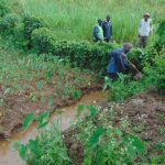 The Water Project: Musiachi Community, Mutuli Spring -  Digging Drainage Channel