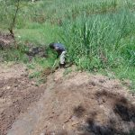 The Water Project: Mukangu Community, Metah Spring -  Digging Drainage Channel
