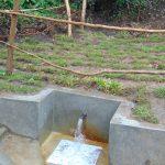 The Water Project: Mubinga Community, Mulutondo Spring -  Clean Water Flows At Mulutondo Spring