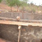 The Water Project: Nguluma Primary School -  Wall Progress