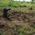 The Water Project: Rubona Kyawendera Community -  Tilling