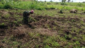 The Water Project:  Tilling