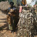 The Water Project: Ejinga Taosati Community -  Bathing Shelter