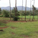 The Water Project: Harambee Community, Elijah Kwalanda Spring -  Surrounding Landscape