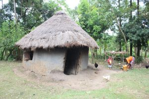 The Water Project:  A Traditional Homestead