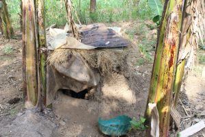 The Water Project:  Dog House