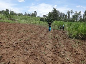 The Water Project:  Planting Season