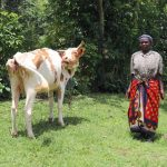 The Water Project: Mahira Community, Litinyi Spring -  A Woman Poses With Her Cow