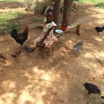 The Water Project: Mukhuyu Community, Chisombe Spring -  A Girl Watches Over Her Familys Poultry