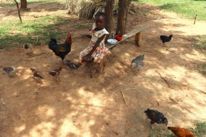 The Water Project:  A Girl Watches Over Her Familys Poultry