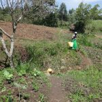 The Water Project: Mahira Community, Jairus Mwera Spring -  Heading To Fetch Water At The Spring