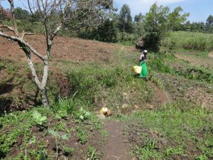 The Water Project:  Heading To Fetch Water At The Spring