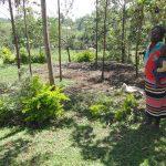 The Water Project: Mahira Community, Jairus Mwera Spring -  Alice Showing Us Her Cows Den