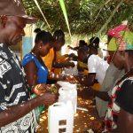 The Water Project: Lokomasama, Gbonkogbonko, Kankalay Primary School -  Tippy Tap Making