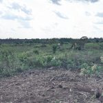 The Water Project: Alero B Community -  Landscape