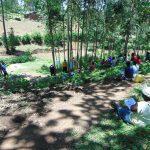 The Water Project: Shiamala Community, David Ashiona Spring -  Social Distancing