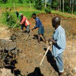 The Water Project: Shikangania Community, Abungana Spring -  Leveling The Soil