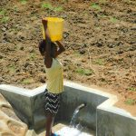 The Water Project: Shikangania Community, Abungana Spring -  Ready To Walk Clean Water Home