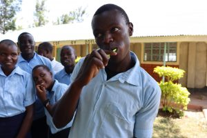 The Water Project:  Dental Hygiene Volunteer