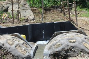 The Water Project:  Protected Kusimba Spring