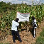 The Water Project: Musango Community, Ham Mwenje Spring -  Reminder Chart Being Installed At The Spring