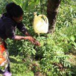 The Water Project: Koloch Community, Solomon Pendi Spring -  Handwashing Practice