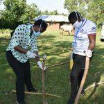 The Water Project: Musango Community, Mwichinga Spring -  Improvising Handwashing Station Stand
