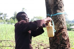 The Water Project:  The Chairperson Mounting The Handwashing Station To A Tree At The Entrance Of His Compound