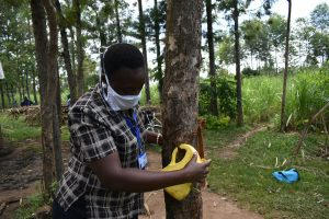 The Water Project:  Attaching The Leaky Tin To A Tree