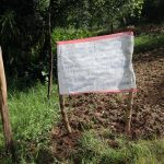 The Water Project: Mubinga Community, Mulutondo Spring -  Installed Reminder Chart At The Spring