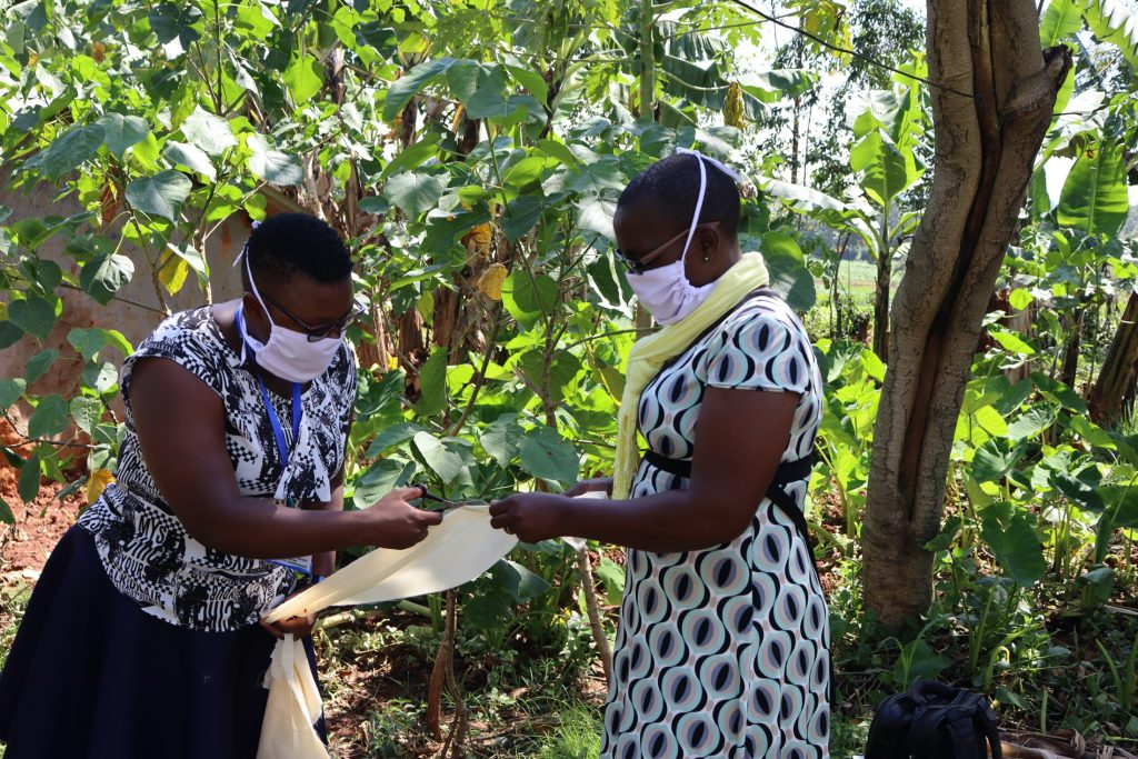The Water Project : covid19-kenya19149-facilitators-help-make-masks-for-participants
