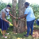 The Water Project: Mtao Community, Tifina Odari Spring -  Setting Stand For Handwashing Leaky Tin