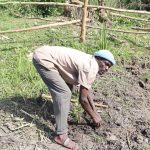 The Water Project: Mukhonje Community, Mausi Spring -  An Elder Plants A Water Friendly Tree At The Spring