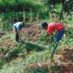 The Water Project: Ewamakhumbi Community, Mukungu Spring -  Foundation Measurements