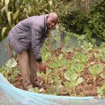 The Water Project: Emukoyani Community, Ombalasi Spring -  Niskson At His Kitchen Garden A Product Of Ombalasi Spring