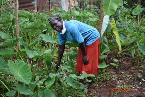The Water Project:  Catherine In Her Kitchen Garden