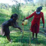The Water Project: Handidi Community, Malezi Spring -  Handwashing