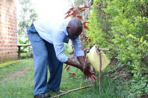 The Water Project:  Henry Handwashing At Home