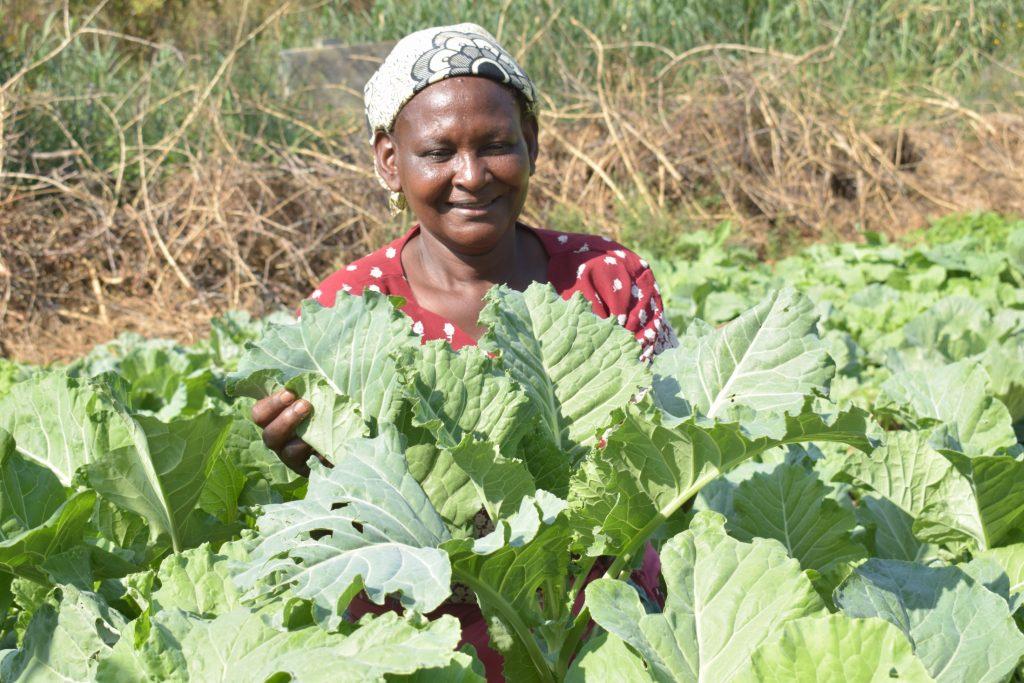 The Water Project : covid19-kenya19210-katethya-mutheki-garden-1