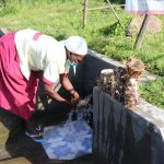 The Water Project: Mahira Community, Kusimba Spring -  Mrs Kusimba Uses Spring Water To Rinse Tubers