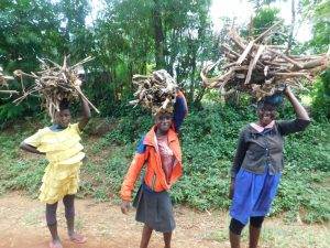 The Water Project:  Collecting Firewood For Cooking