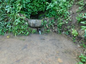 The Water Project:  Current Situation Of Lubale Spring