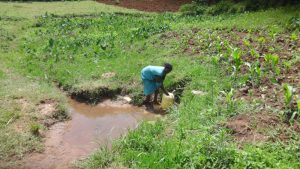 The Water Project:  Agnes Collecting Water
